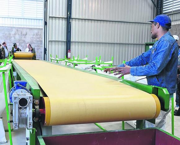 Residuos: se prevé construcción de nueva planta de clasificación. Foto: IMM