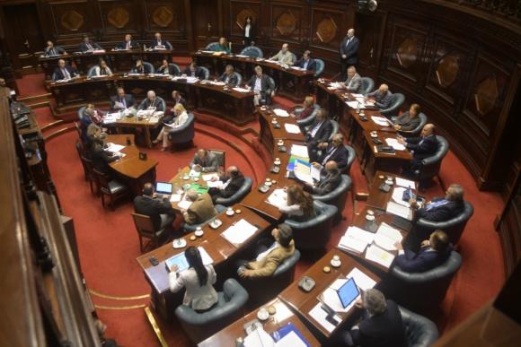 El debate en el Senado por UPM lleva ya varias horas. Foto: Francisco Flores
