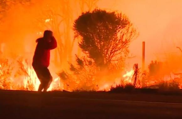 Arriesgó su vida para salvar a un conejo en incendio. Foto: captura video Reuters
