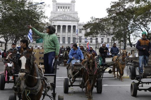 El objetivo de la IMM es eliminar los carritos de caballos. Foto: Archivo
