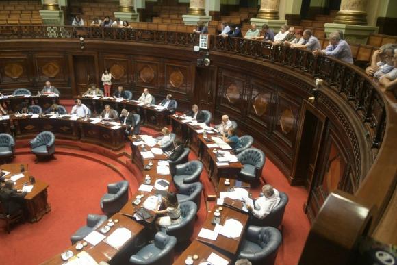 El Senado vota hoy el proyecto de ley de los cincuentones. Foto: Francisco Flores.