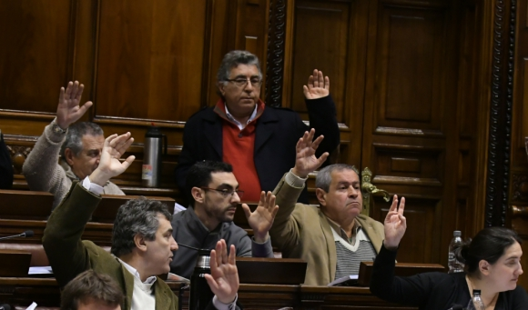 Pérez se negó a votar el impuesto transitorio por inconstitucional. Foto: A. Colmegna
