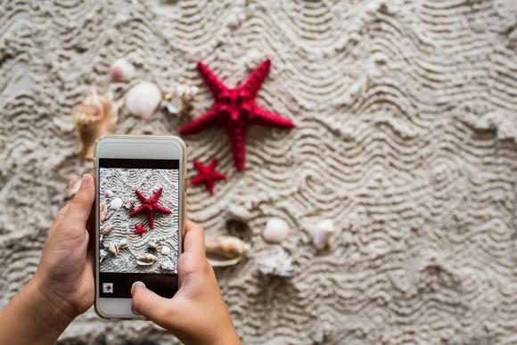 Smartphones en verano. Foto: Pixabay