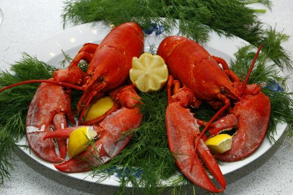 Suiza prohíbe cocinar las langostas tirándolas en agua hirviendo