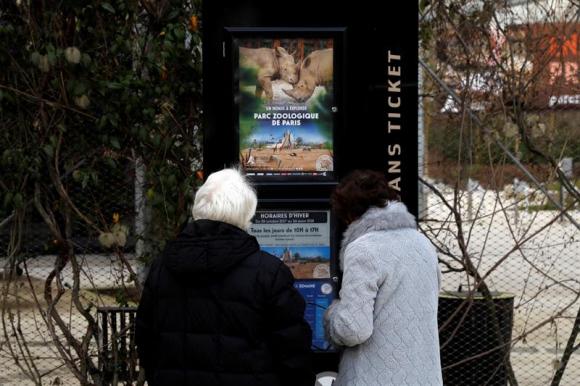 Medio centenar de monos se escapó del zoo de París. Foto: EFE