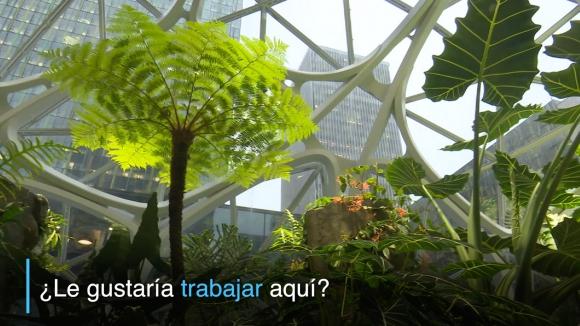 """Amazon inaugura """"bioesferas"""" para que sus empleados trabajen mejor"""