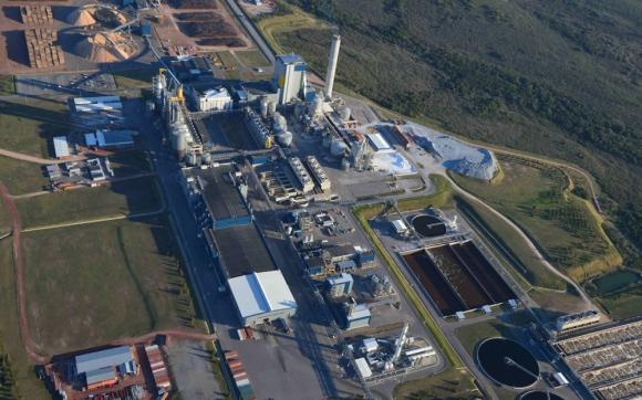 UPM: la empresa construiría su segunda planta al sur del Río Negro, en las cercanías de Paso de los Toros. Foto: Daniel Rojas
