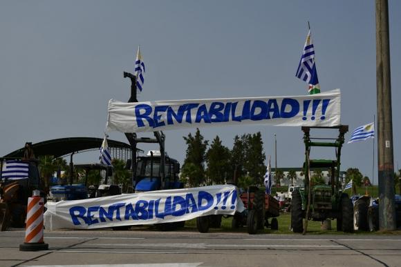 Autoconvocados: decidieron participar del diálogo. Foto: Fernando Ponzetto