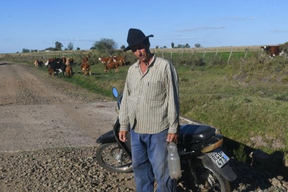 Anastasio Castel Ferreira saca su ganado a pastar a la ruta. Foto: F. Flores