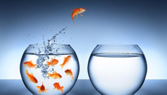 Investigaciones. Dejan sin sustento ideas tradicionales sobre la conducta de grandes innovadores. Foto: Shutterstock.