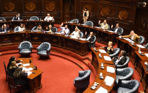 Finalmente el Senado votó por unanimidad las venias para los nuevos directores de ASSE. Foto: A. Colmegna