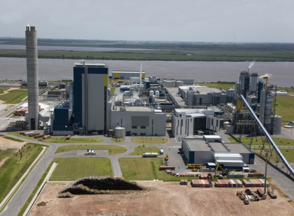 UPM: la nueva planta estará a 6 kilómetros al sureste de Paso de los Toros. Foto: G. Robles