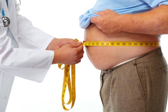 Resultado de imagen para obesidad
