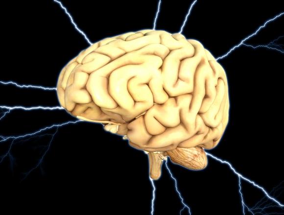 El cerebro humano se actualiza para acostumbrarse a lo inesperado ...