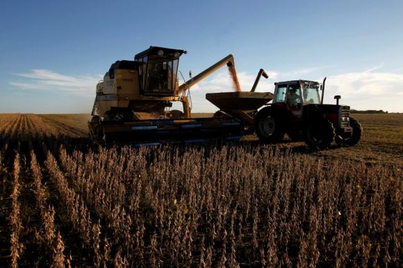 Cosecha brasileña de soja se estima en 118,4 millones de toneladas. Foto: Reuters