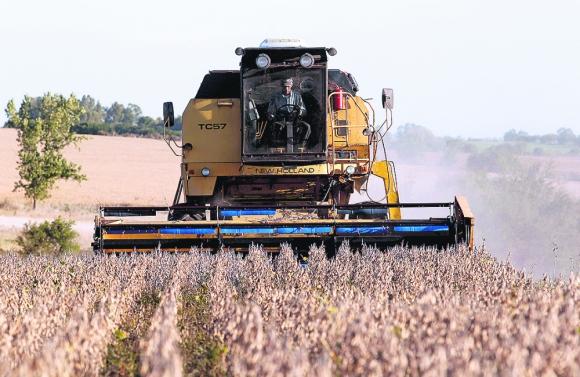 Impacto: sin tener en cuenta las ventas de soja, las exportaciones hubieran crecido 11% en el mes. Foto: Reuters