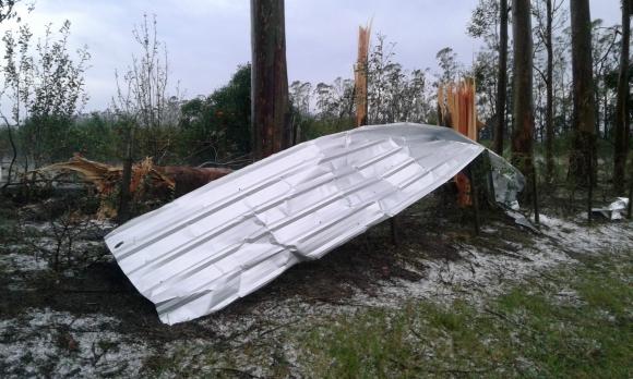 Destrozos provocados por temporal en Salto. Foto: Luis Pérez.