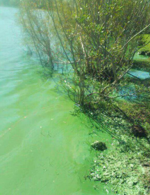 Estudios: las investigaciones acuáticas requerirán permisos.