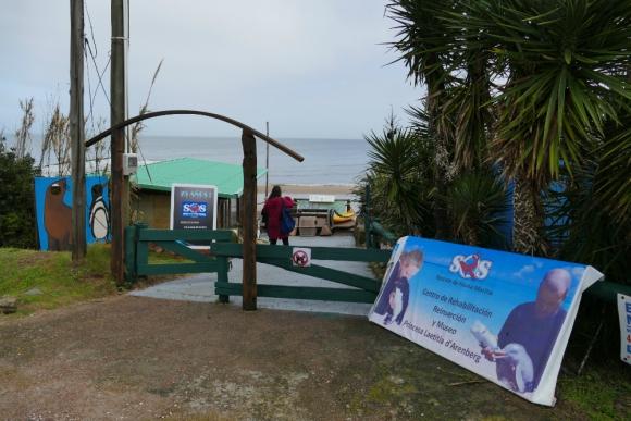 El predio en el que funciona SOS Rescate de Fauna Marina, en Punta Colorada