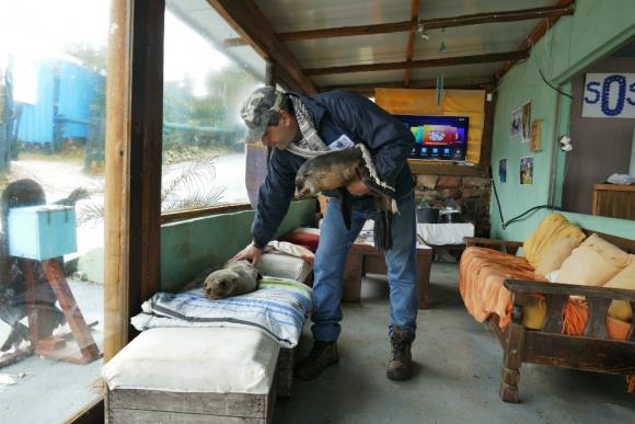 Richard se dedica por completo al cuidado de los animales