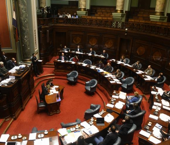Cruces: el debate entre oficialismo y oposición tuvo tramos de especialidad dureza en el Senado ayer. Foto: Francisco Flores