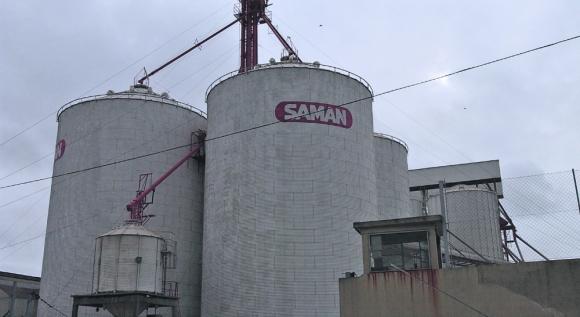 Situación: la producción arrocera se redujo el año pasado y las repercusiones llegan a Saman, que decide reducir personal. Foto: archivo El País