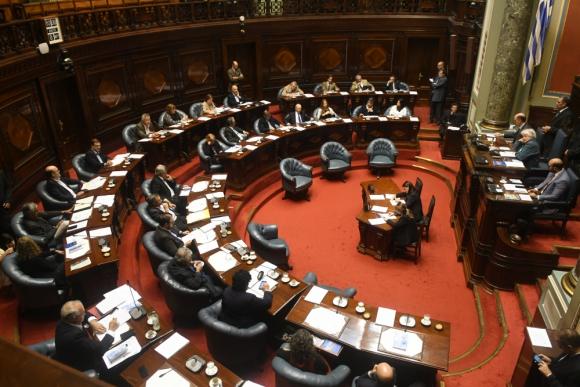 Rendición: el Senado terminó de considerar el proyecto que debe volver a Diputados para considerar y aceptar o no los cambios. Foto: Francisco Flores