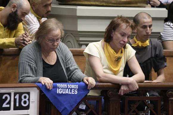 El Senado vota la ley trans. Foto: Leo Mainé