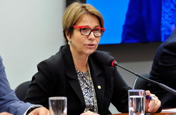Resultado de imagen para Tereza Cristina Correa da Costa mercosur brasil