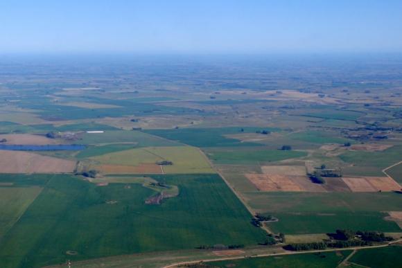 El fideicomiso prevé comprar hasta 20.000 hectáreas. Foto: Ricardo Figueredo
