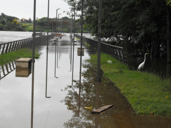 Inundaciones en Salto. Foto: Luis Pérez.