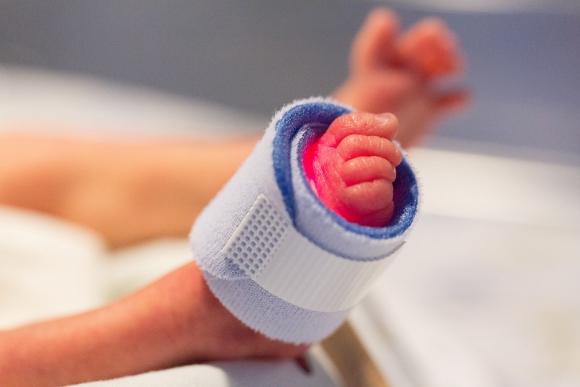 Bebés prematuros. Foto: Pixabay