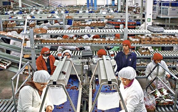 Trabajadores en una fábrica. Foto: Reuters