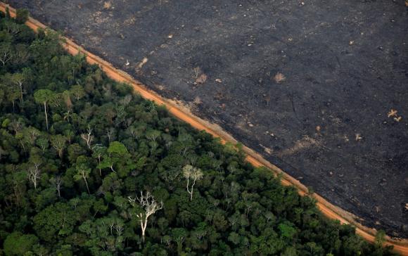 Deforestación en la Amazonia tras múltiples incendios. Foto: Reuters