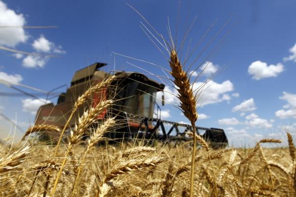 Agricultura. Foto: Reuters