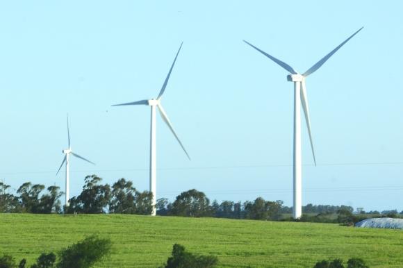 Parque eólico en Uruguay. Foto: Darwin Borrelli (Archivo)