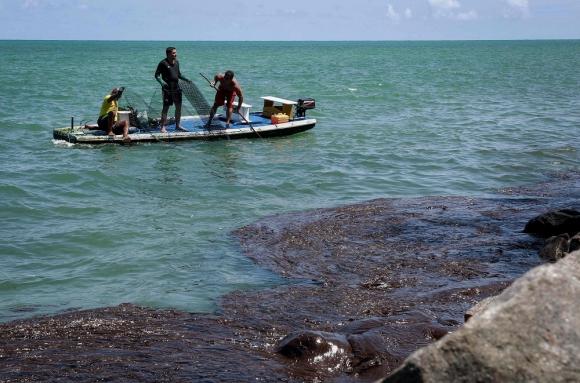 Desastre: El petróleo daña grandes extensiones de playas. Foto: AFP