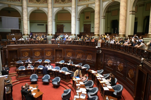 Cámara de Senadores. Foto: Leonardo Mainé.