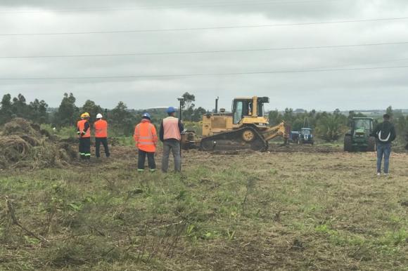 Las máquinas que trabajan en el terreno donde estarán las nuevas canchas de Peñarol. Foto: Pablo Cupese.
