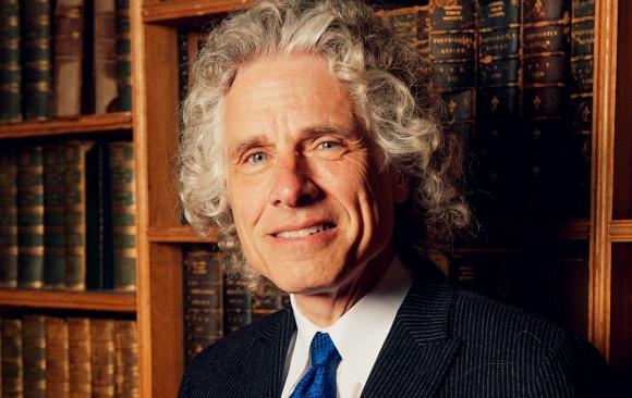 """Steven Pinker sostiene que aunque algunas empresas han causado daños, pero también señala que otras """"brindan a las personas lo que necesitan y desean""""."""