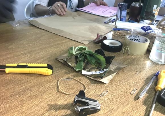 Hojas de marihuana y una bolsa con un polvo blanco aparecieron dentro de un sobre en el escrutinio departamental de Montevideo. Foto: Pablo Melgar