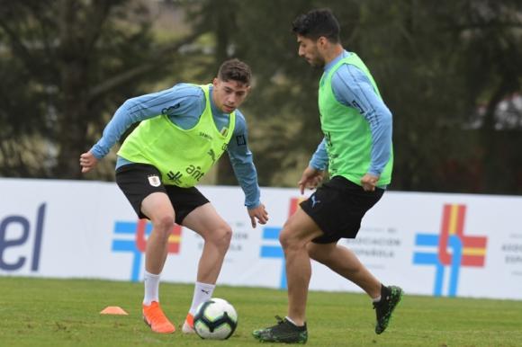 Federico Valverde y Luis Suárez en el entrenamiento de la selección uruguaya. Foto: Francisco Flores.