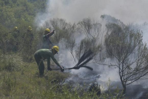 Bomberos trabajan este lunes en un incendio que se desarrolla en Camino de la Redencion y Camino Los Camalotes. Foto: Leonardo Mainé
