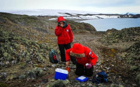 Investigación en la Antártida. Foto: EFE