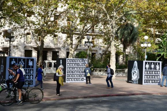 Varios voluntarios colocaron margaritas en diferentes partes de la ciudad. Foto: Francisco Flores.