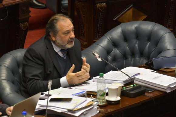 Jorge Gandini. Foto: Leonardo Mainé.