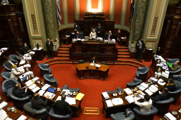 El Senado comenzó ayer a considerar los 476 artículos que contiene la ley de urgente consideración y continuará hoy con la votación. Foto: Leonardo Mainé