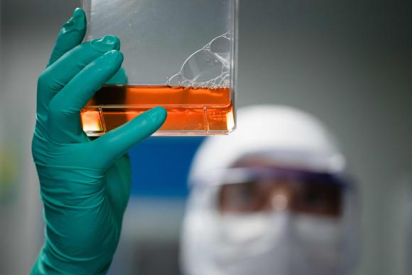 Francia realiza pruebas para vacuna contra el COVID-19. Foto: AFP