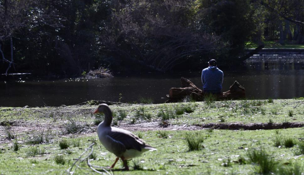 El lago, ganado por cianobacterias, preocupa a sus vecinos. Foto: Fernando Ponzetto