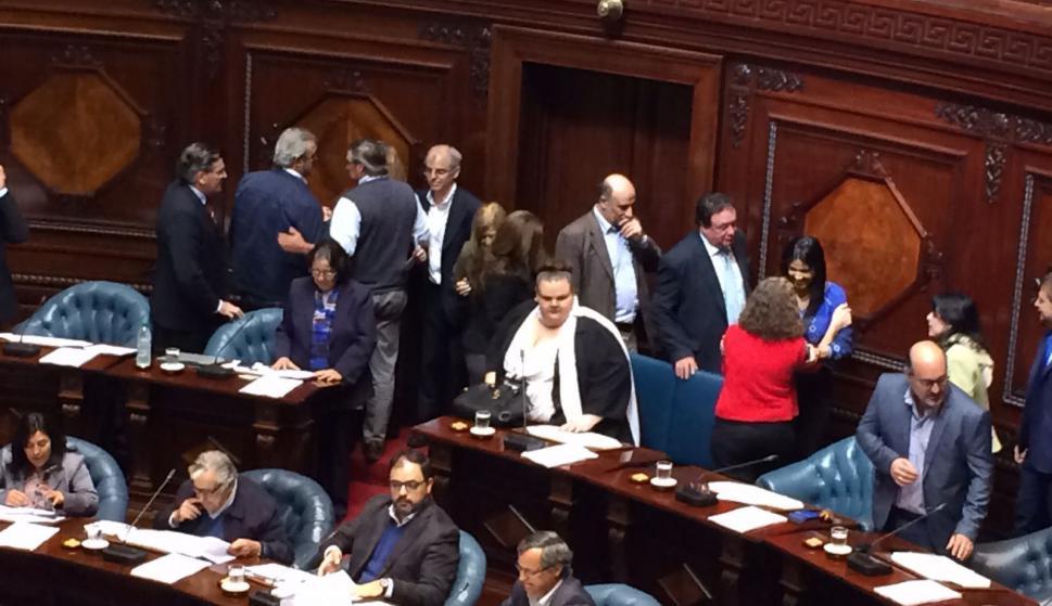 Michelle Suárez en el Senado. Foto: Bruno Scelza
